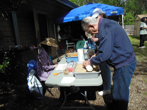 Another volunteer helped visitors make pine-cone bird feeders.