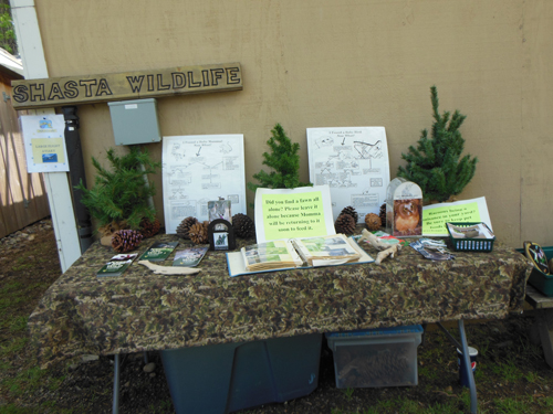 Each exhibit at the event provided valuable information about wildlife rescue.