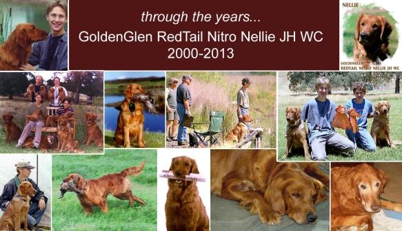 Nellie 2000-2013