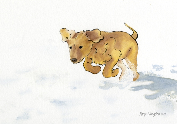 Woot! Woot! Snow day! Time for a happy romp! Inked on 300lb arches rough then watercolor washes. 2013 MaryALivingston