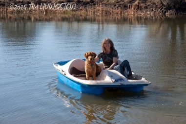 retriever_boat09_144