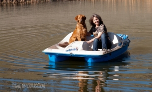 retriever_boat11_162
