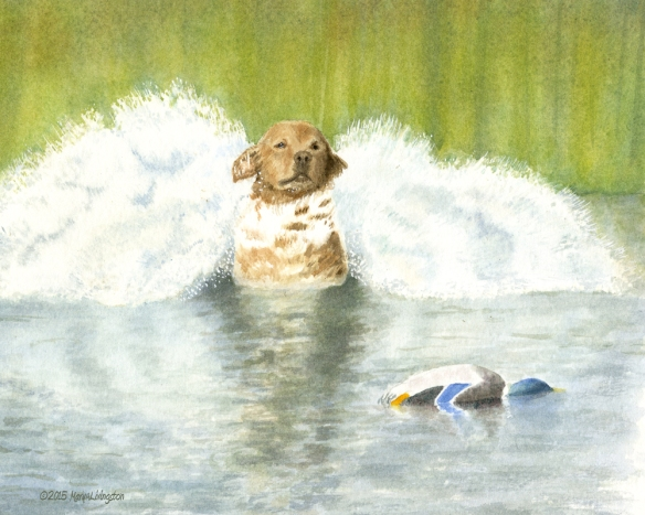Sailor on the retrieve in watercolor.