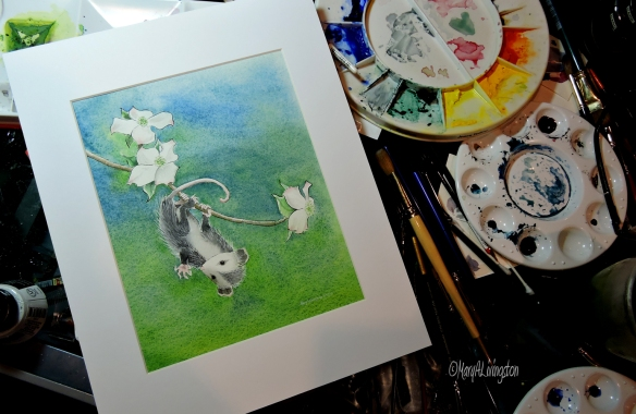 Donated original painting for Shasta Wildlife Rescue and Rehabilitation.