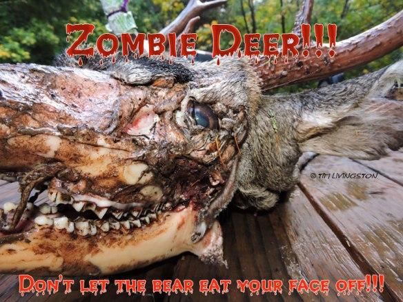 Zombie Deer!, zombie, deer, Halloween